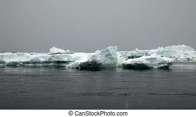 Snow Fall with Icebergs in Antarctica