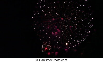 Colorful Fireworks Celebration