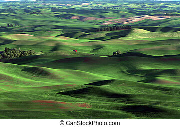 Red House - Palouse farmland