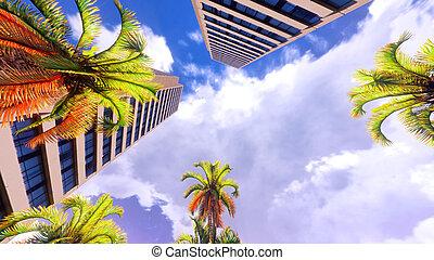 Hawaiian paradise - Hawaiian paradise