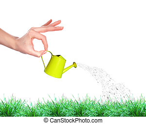 Hand with a small watering