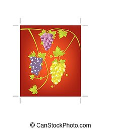 Grapevine on red background - Miscellaneouses of the sort of...