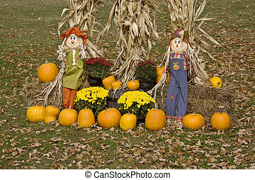 Halloween display Minnesota Pumpkin scarecrow corn maize