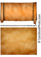 Papyrus. - Scroll of ancient parchment and texture of grunge...