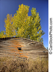 Old Rustic Granary storage Saskatchewan Canada