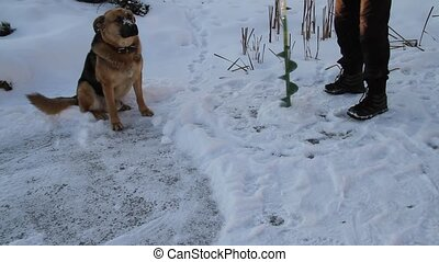 Dog on winter fishing 4 - Dog on winter fishing Russia