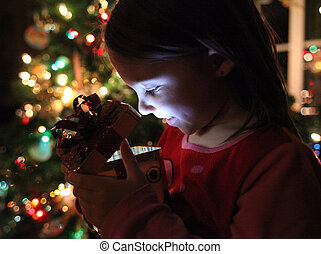 Little girl gets a magical Christmas gift
