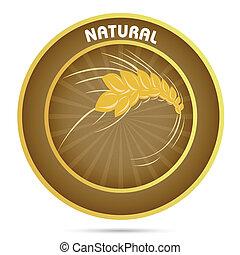natural grain - illustration of natural grain on white...