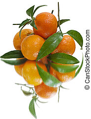 Juicy tangerines (isolated) - Juicy tangerines just out of...