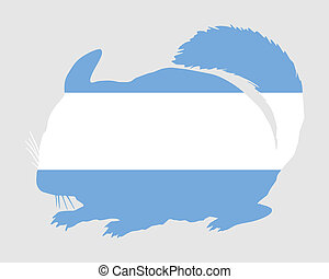 Chinchilla Argentina