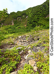 Crater of Saint Kitts