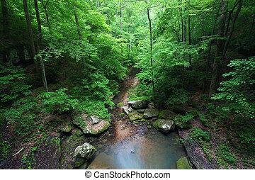 Alabama Scenery