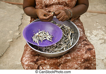 African Woman Working - Woman in Ghana peeling achovies