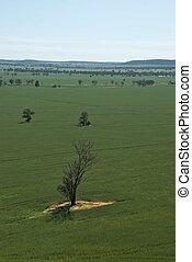 landscape - a farming landscape