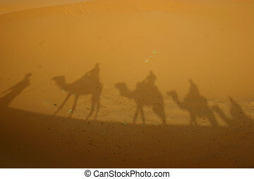 Shadows in the desert - A camel caravan throws its shadow on...