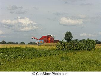 Big red combine