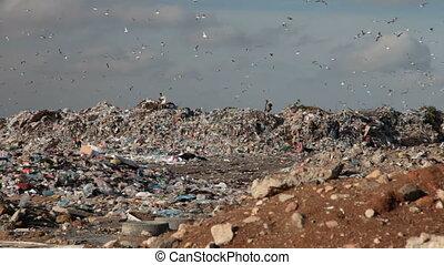 Landfill garbage