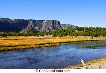 Yellowstone landscape - Scenic landscape in Yellowstone...