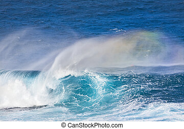 Ocean Wave - Huge breaking wave with a nice tube and a...