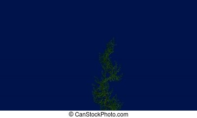 Vines - A vine growing on a blue background