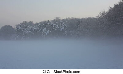 winter landscape in fog