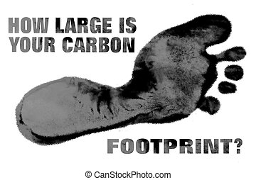 How Big Is Your Carbon Footprint? - A large carbon colored...