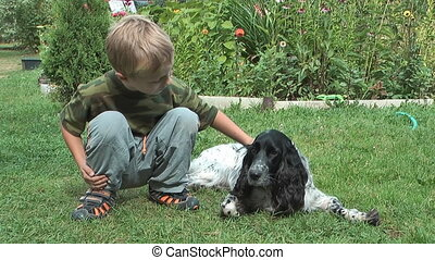 Boy and spaniel - A child stroking a dog lying on the grass...