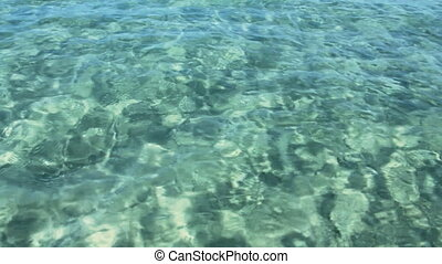 transparent sea water in shallow