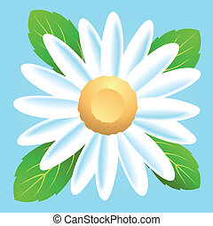 Daisy - A simple vector icon of a daisy flower