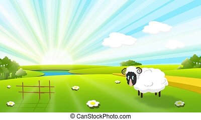 sheep - illustration, white sheep on pasture on solar sky