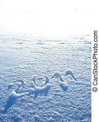 Year 2011 written in Snow