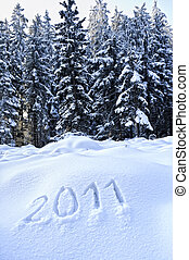 Year 2011 written in Snow with Winter Forest