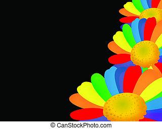 Rainbow flower - Background