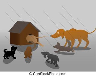 hiding - dogs hiding