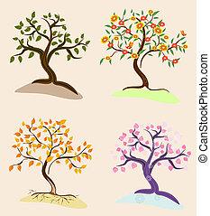 trees seasons