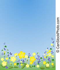 primroses and violets - an illustration of yellow primroses...