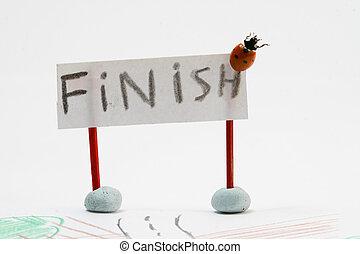 ladybug racer - fast ladybug racer run to finish
