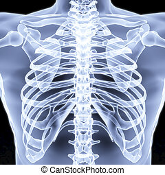 chest - Men's chest X-rays under. 3d image.