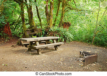 Forest Campsite - Picnic table and BBQ pit at a forest...