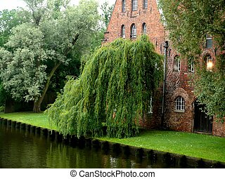 Old castle Windows - An ancient castle in the heart of...