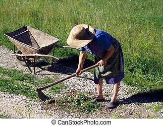Woman hoe - a peasant tilling the land with hoes and...