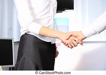 Business woman shaking hands with a man in the office