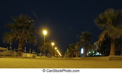 People walk on avenue along which palm trees grow. - People...