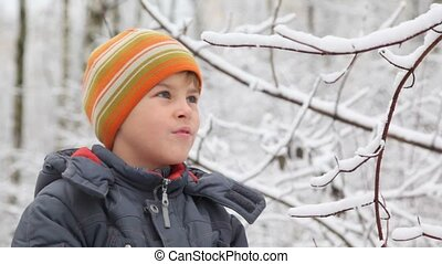 kid shakes branch of winter tree snow falls down - Smiling...