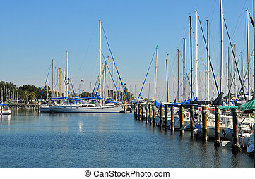 Sailboats at dock - Florida scene of a marina with docked...