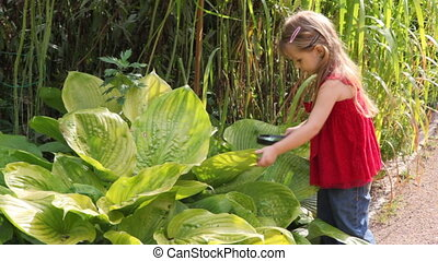 girl discover some plant outdoor with magnifying glass -...