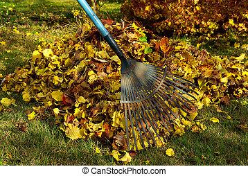 leaves rake 02