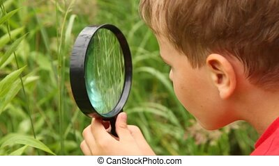 boy is busy by examining nature with a lens summer day.