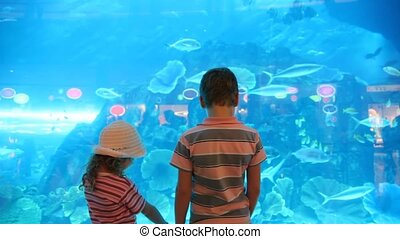 back view of children visiting the oceanarium - back view of...