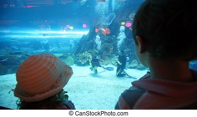 back view on children standing at aquarium - back view on...